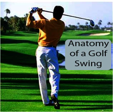 golf swing sound sound health vocal profiling software and online classes