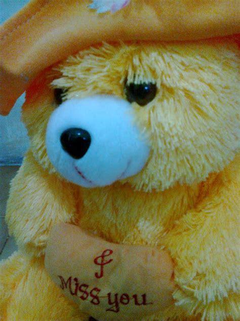 Boneka Beruang Besar L Teddy Lucu Murah Hijau 3 jual boneka teddy besar boneka beruang
