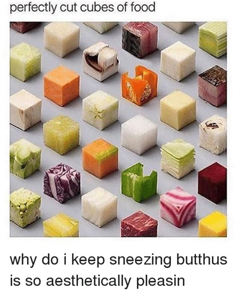 why does my keep sneezing 25 best memes about sneezing sneezing memes