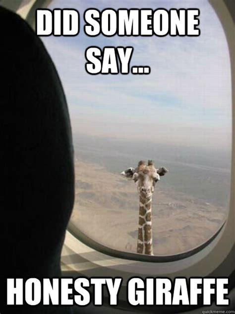 Meme Giraffe - funny giraffe memes memes