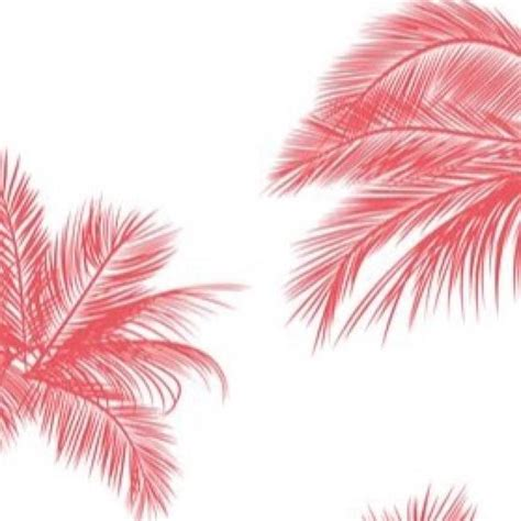 www pinterest com pink palm trees pinterest