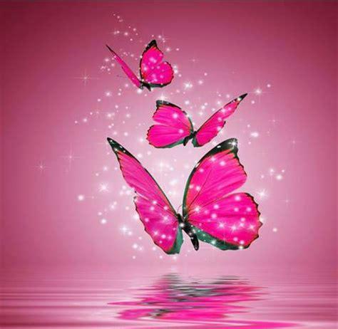 Imagenes De Mariposas Bonitas Y Fondos De Pantalla De | fondos de pantalla de mariposas buscar con google