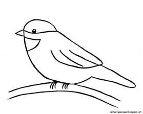 How To Draw Bird Simple Bird Drawing For Amazing Wallpapers