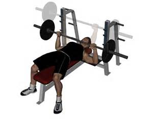The Bench Press Bench Press Apps Directories
