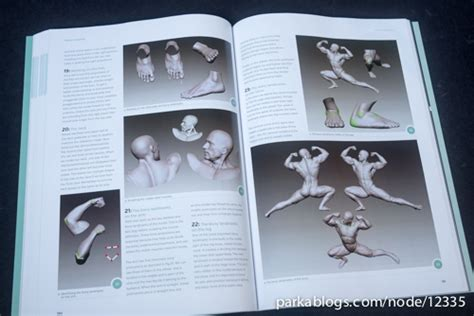 Pdf Anatomy 3d Artists Essential Professionals by Book Review Anatomy For 3d Artists The Essential Guide