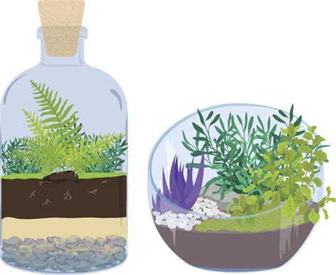 sealed bottle garden ultimate guide to terrariums