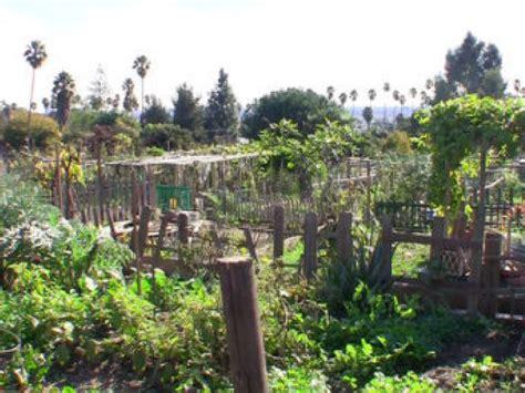 Wattles Garden Park by Improvements To Wattles Garden Park Dedicated Patch