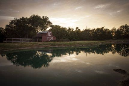 firefly gardens  midlothian texas