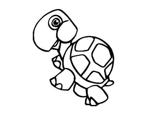 imagenes animales terrestres para colorear dibujo de tortuga terrestre para colorear dibujos net