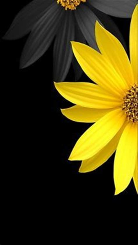 black wallpaper with yellow flowers 25 best ideas about black background wallpaper on