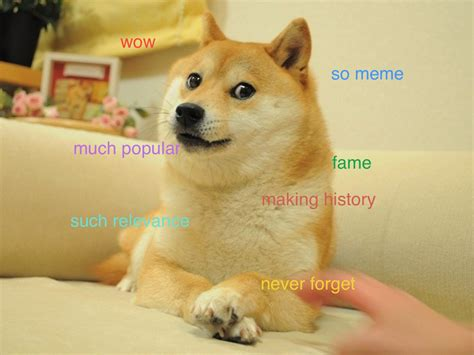 Meme Dog Wow - understand the quot doge quot meme in 7 short steps the barkpost