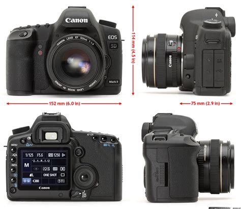 canon eos 5d ii digital canon eos 5d ii in depth review digital photography