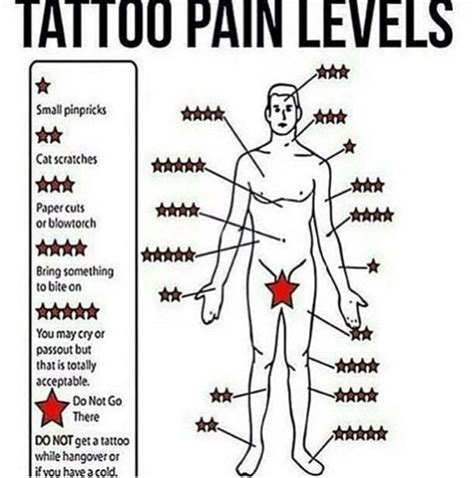 why do tattoos hurt 25 best ideas about forearm on