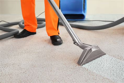 rug cleaning etobicoke carpet cleaning etobicoke house condo carpet cleaning company