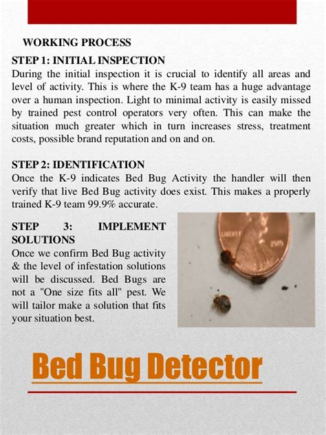 cost of bed bug extermination cost to exterminate bed bugs amusing what is the cost of