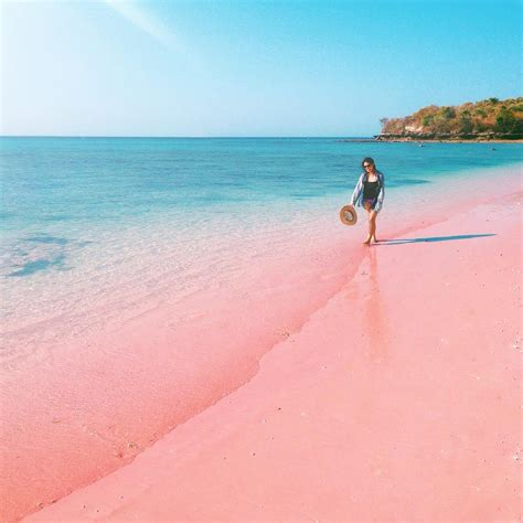 beaches with pink sand travelling in top 10 indonesian beach and sea shore