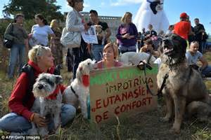 comfort dog laws anger animal rights activists hold a placard reading