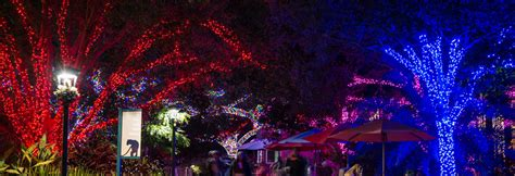 holidays in houston christmas holiday events