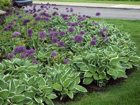 making a flower bed bedroom grant flower bed ideas to make beautiful garden edging a flower bed