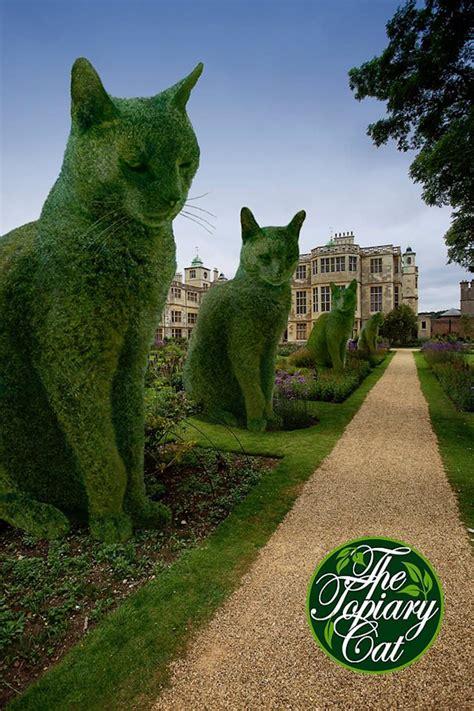 topiary cat topiary cat artist creates fantastic landscapes that