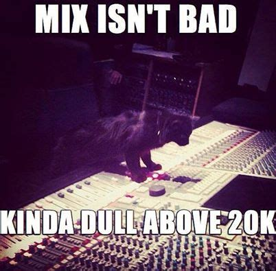 Audiophile Meme - 350 best odds and ends images on pinterest funny stuff