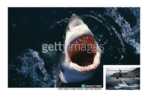 getty images print advert  ogilvy shark ads   world