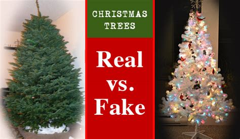 christmas trees real vs fake carycitizen