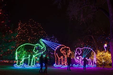 zoo lights 2017 chicago stoneham zoo christmas lights 2017 decoratingspecial com
