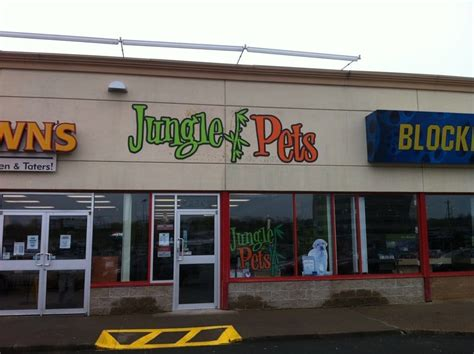 puppies store near me reptile store near me pets world