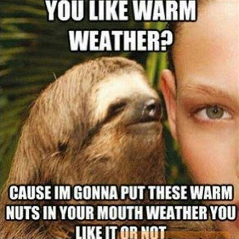 Perverted Sloth Meme - creepy sloth whisper