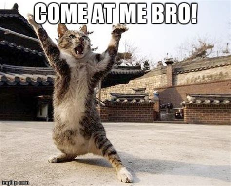 Come At Me Bro Meme - gdt colts vs jets mnf new york jets message board