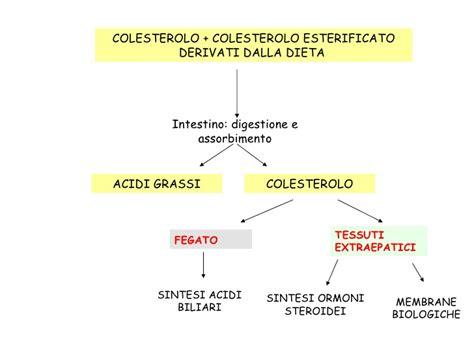 acetone alimentazione l acetone 232 un disordine metabolico richiede una dieta