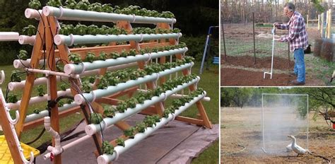 diy homestead projects 15 pvc projects for your homestead home design garden architecture magazine