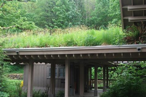 ancient green roofs green roof inspiration insteading
