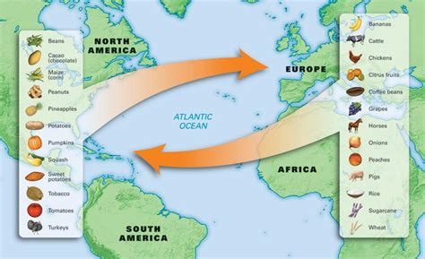 columbian exchange map mrgrayhistory unit 13 the age of exploration
