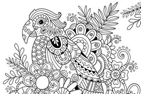 sun and flowers coloring book for adults featuring beautiful and creative floral designs for stress relieve and sweet relaxation books coloring page summer parrot 6