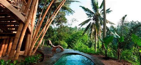 green village exotic treehouse hotels  bali indonesia