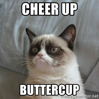 Cheer Up Cat Meme - cheer up buttercup grumpy cat meme generator