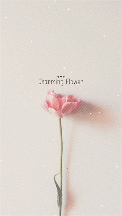 simple wallpaper pinterest pure charming flower simple pattern iphone 6 plus