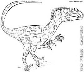 velociraptor coloring page velociraptor coloring pages coloring pages to