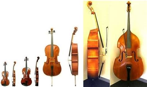 String History - the violin family history of the cello