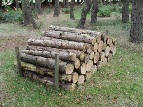 Resume Help Online by A Pile Of Logs