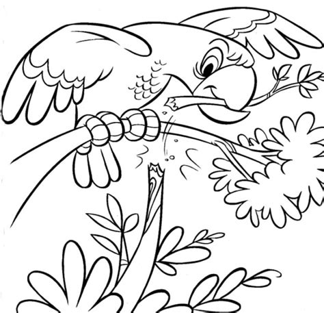 animal coloring book coloring now 187 archive 187 animals coloring pages