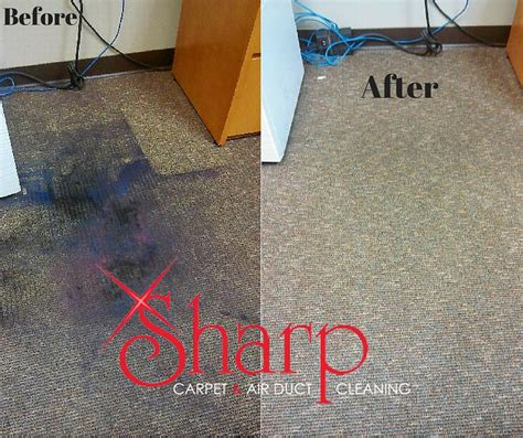 Upholstery Cleaning Omaha carpet cleaning services omaha carpet nrtradiant