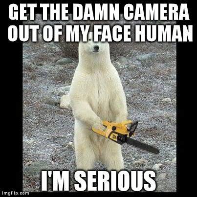 Chainsaw Meme - chainsaw bear meme imgflip