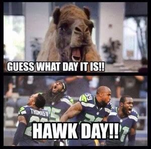 Funny Seahawks Memes - seahawks funny quotes quotesgram