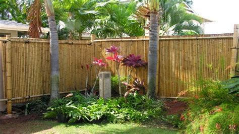 decorative garden fencing ideas bamboo fencing privacy fence best bamboo for privacy fence