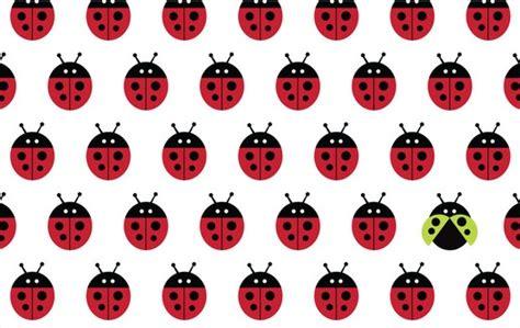 Wall Graphics Stickers cute ladybug wallpaper wallpapersafari
