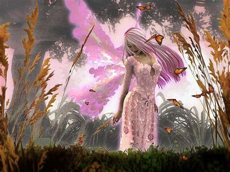 pink butterfly fairy background wallpapers fairy
