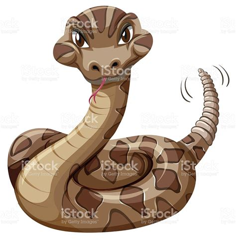 rattlesnake clipart boa clipart rattlesnake pencil and in color boa clipart